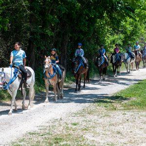Horseback Trail Rides at Kraus Farms